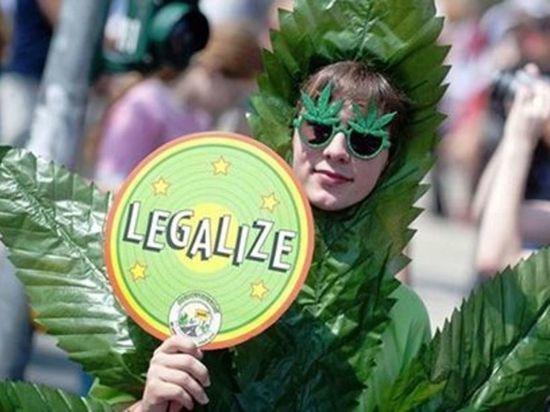 Легализация конопли в казахстане головки марихуаны