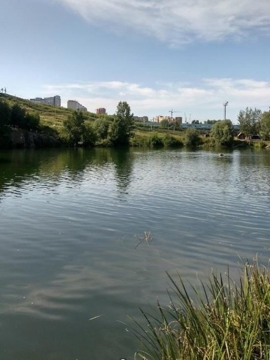 Озеру у станции метро «Спортивная» обустроят пологие берега