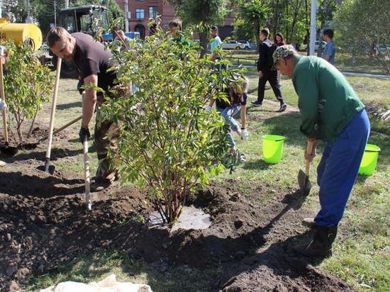 Участники форума добровольцев облагородили новосибирский сквер