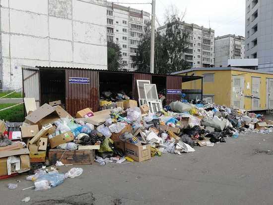 В Иркутске выясняют, какого цвета уши у мусора