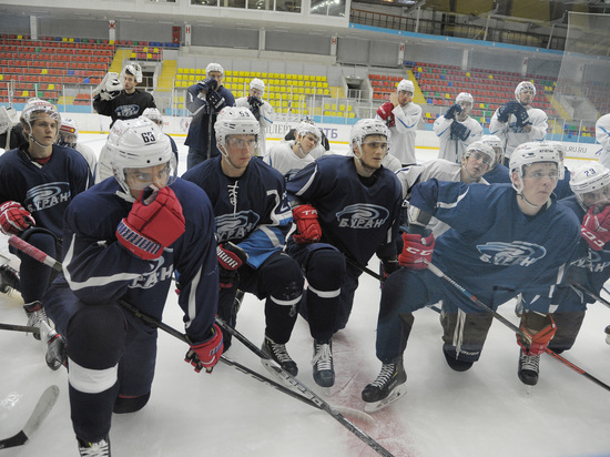 Воронежская хоккейная дружина готовится к новому чемпионату