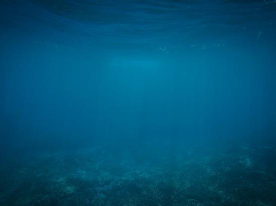 Версия: что известно о пропаже петрозаводского дайвера в Баренцевом море спустя месяц