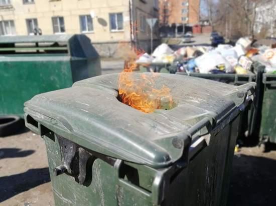 Почему опыт европейских мусорщиков не подходит Петрозаводску
