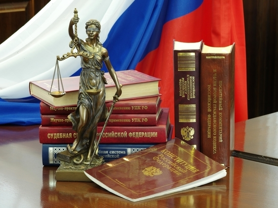В Новосибирске вынесен приговор женщине, ударившей полицейского