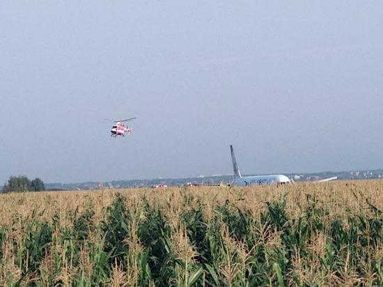 Самолет аварийно сел в поле, выжили все: онлайн
