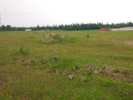 Инвесторов для строительства магазина ищут в Ноябрьске