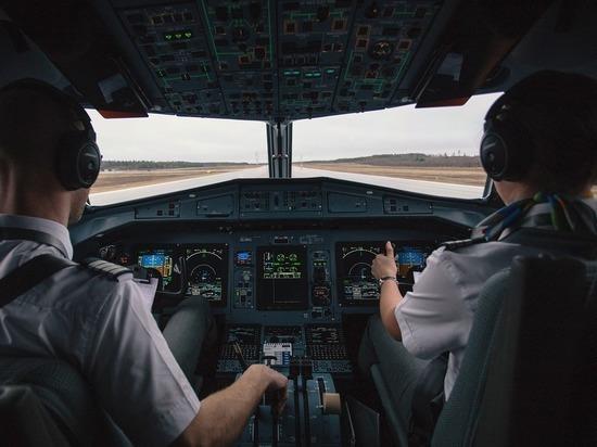 Как экипажи действуют при столкновении самолета с птицами