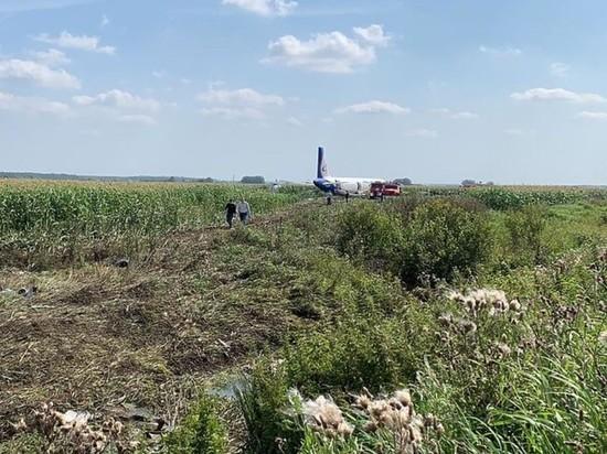 Пилоты A321 специально нарушили инструкцию Airbus, садясь на поле