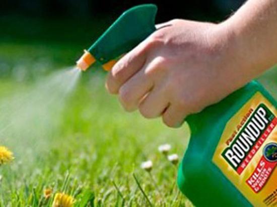 Опасная химия: EPA не одобрило предостережение на этикетках продуктов содержащих глифосат