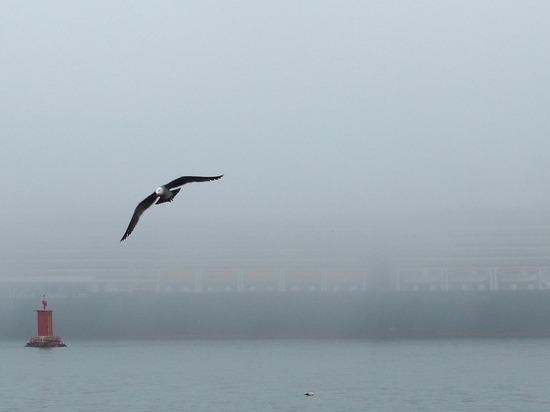 Главная переправа Ямала остановлена из-за тумана