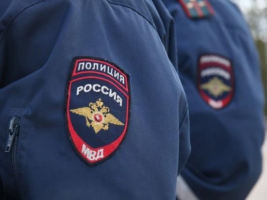 В Новосергиевском районе из дома украли продукты