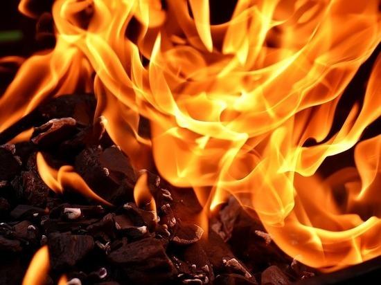 На дороге в Стругокрасненском районе горел автомобиль