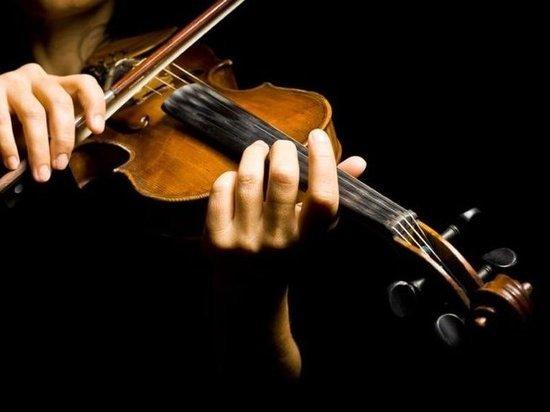 У сына концертмейстера Мариинки украли скрипку стоимостью 220 тысяч рублей