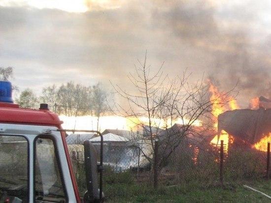 В Курской области в огне пожара погибли дети