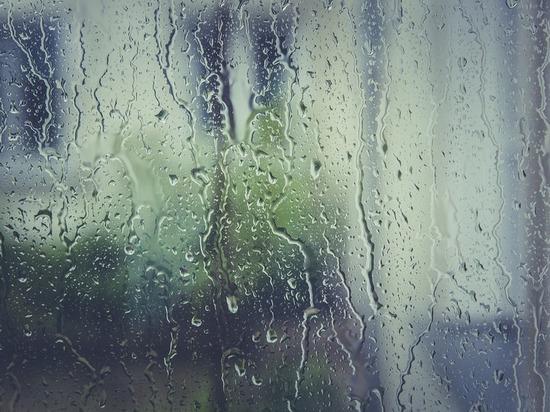 В Татарстане сохранится теплая неустойчивая погода