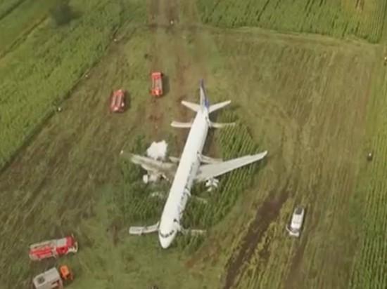 СМИ сообщили о разворовывании севшего на поле А321