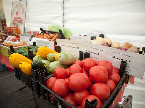 Для жителей региона заработает выставка «Волгоградский овощевод»