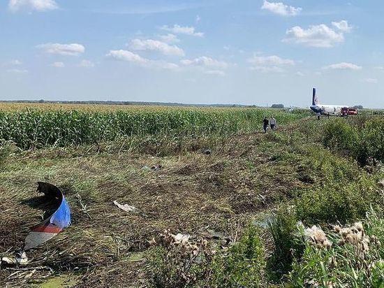 Специалисты начали демонтаж салона севшего в поле A321