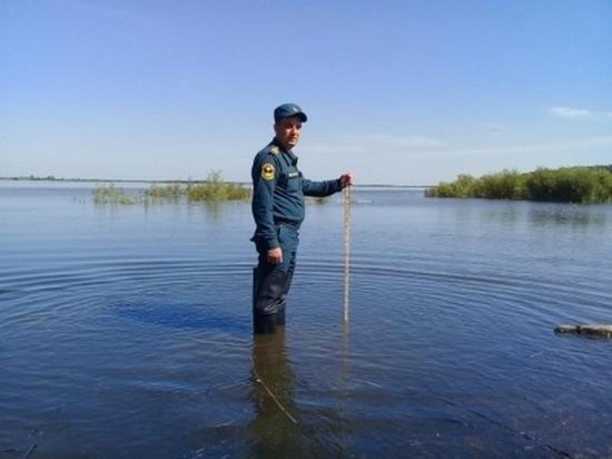 Уровень Амура у Хабаровска достиг 595 см
