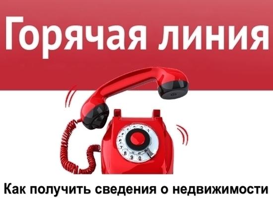В Кадастровой палате Липецкой области пройдет горячая линия: предоставление сведений ЕГРН