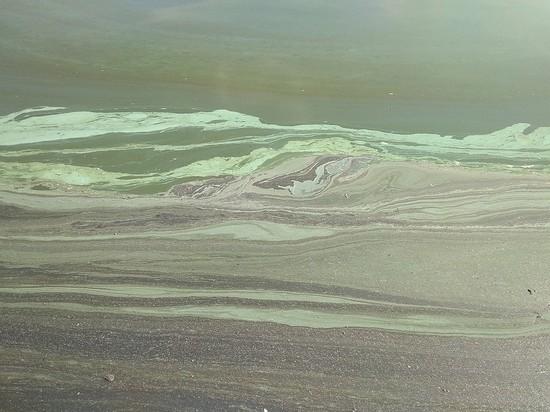 Жители Миасса заметили бирюзовые пятна на поверхности озера Тургояк