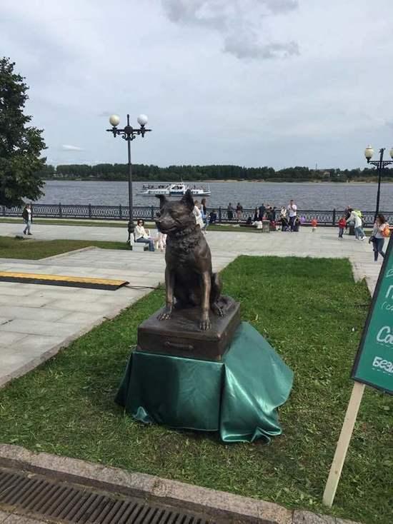 В центре Ярославля устроили презентацию памятника бездомной собаке