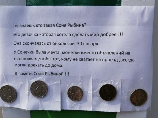 #МечтаСониРыбиной: питерский флешмоб дошел до Новосибирска