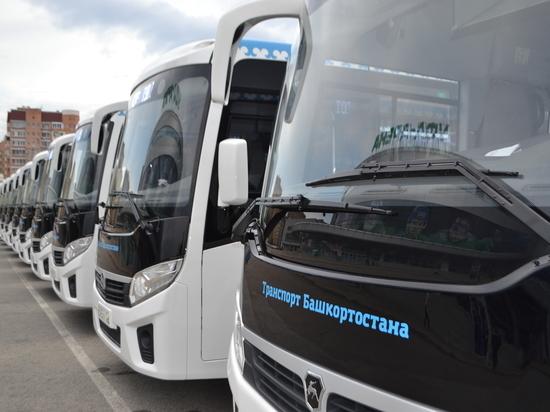 Автопарк госперевозчика обновился на 238 современных автобусов
