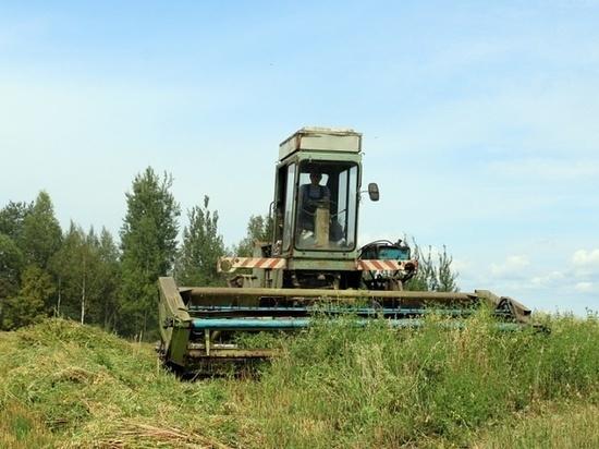 На территории Торопецкого района Тверской области активно идет заготовка кормов