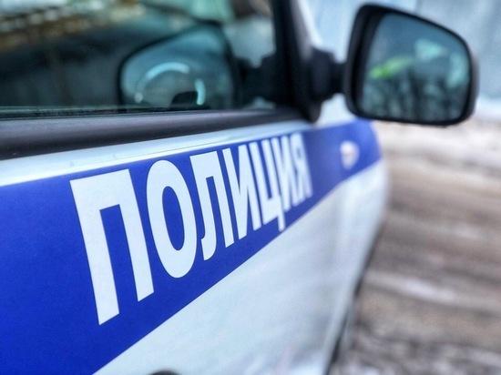 В Осташкове Тверской области полицейские задержали подозреваемого в дачной краже