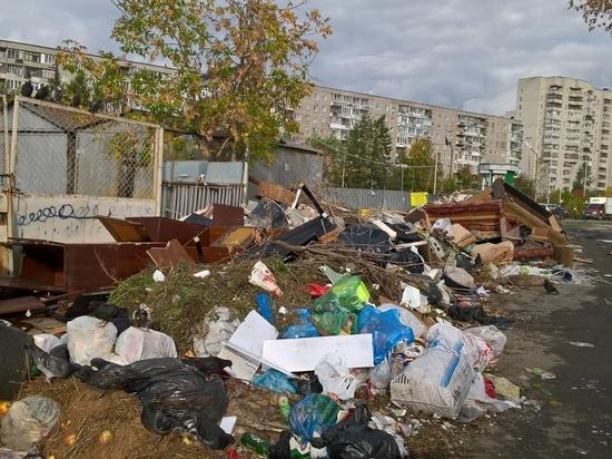 Росавиация выступила против строительства мусорного комплекса около Кольцово