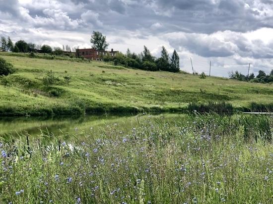 Нечистоты из Липок отравляют реки Тульской области