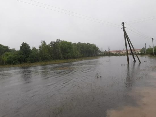 Сыновья бросили беспомощную мать во время наводнения в Приамурье