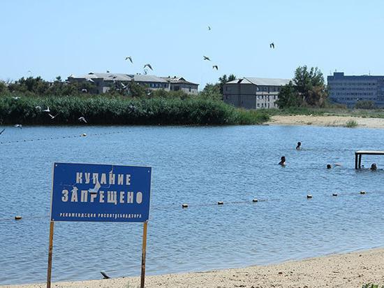 Единственный в столице Калмыкии пруд обследуют приглашенные специалисты
