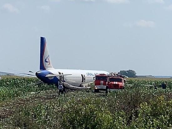 Севший на поле A321 разрежут на месте
