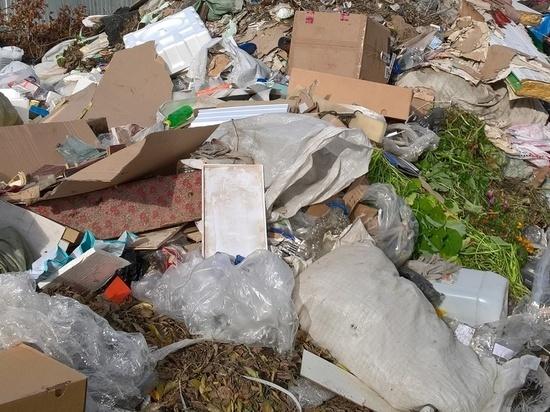 Свердловчане выступают против мусорных заводов