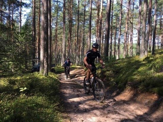 В Печорском районе пройдут соревнования по маунтинбайку кросс-кантри