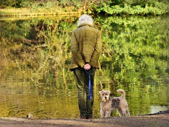 Собаки спасают хозяев от ожирения, показало исследование