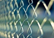 В Бурятии беглецов из Северной Кореи приговорили к заключению
