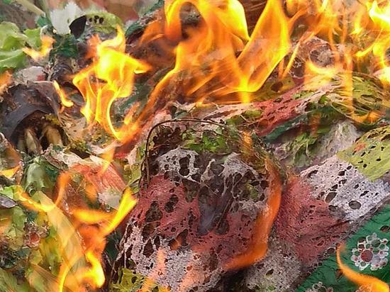 Партию листового салата сожгли в Удмуртии
