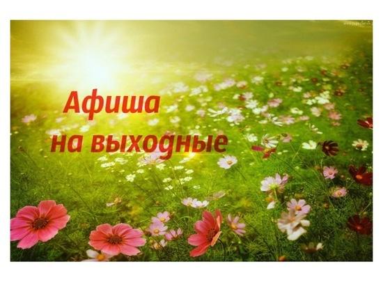 Где и как провести воскресенье в Серпухове: афиша мероприятий