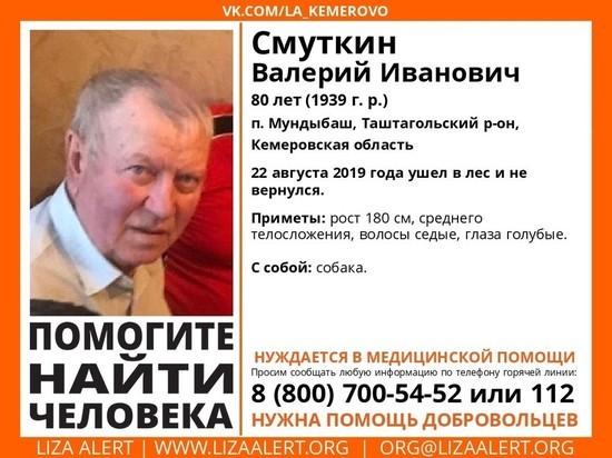 Пенсионер с собакой пропал в тайге в Кузбассе