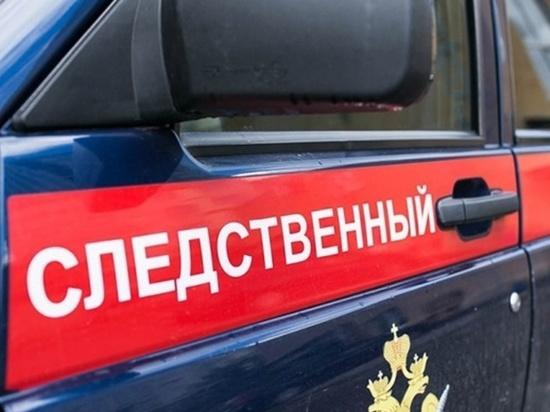 В Брянской области в канаве утонул семилетний мальчик