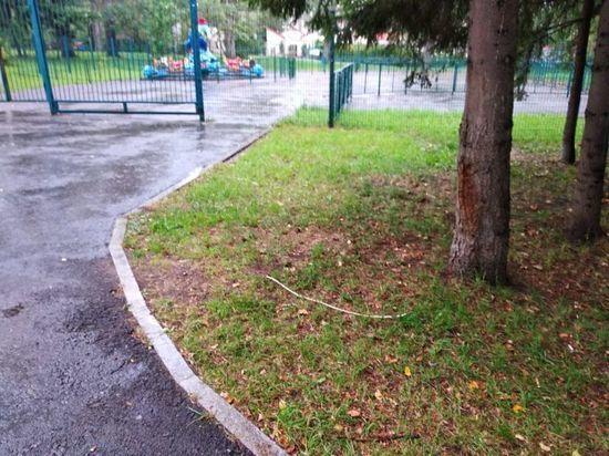 Гуляя в уфимском парке, трехлетний ребенок получил удар током
