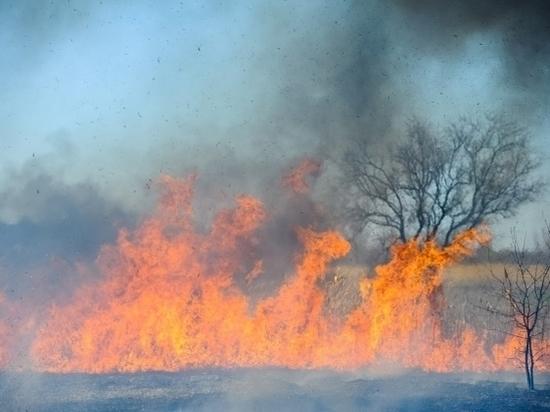 Почти 4 часа тушили в Волгоградской области 150 тонн сена