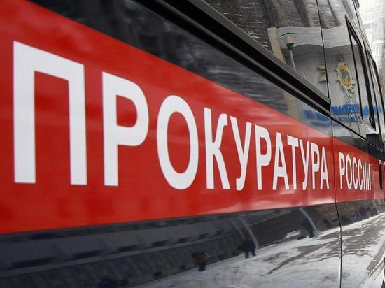 В  Новосибирске прокуратура нашла виновных в смерти ребенка на свалке