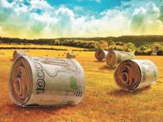 Калмыцкий минсельхоз вновь предоставит крестьянские  гранты