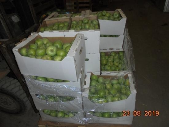 В Кирове уничтожили полтонны фруктов