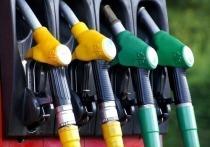 Росстат зафиксировал снижение цен на бензин