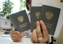 Почти 34 миллиона россиян угодили в